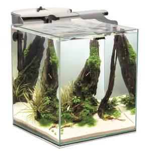 Bilde av Akvarium Aquael Nano Duo, 49 liter - Ferskvanns Akvarium