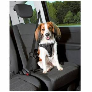 Bilde av Bilsele Hund Trixie Car Harness Dog Comfort