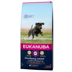 Bilde av 15 kg Hundemat Eukanuba Junior Developing, Large Breed, Kylling