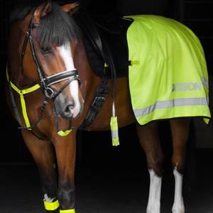 Bilde av Lendedekken Neongul Jacson - Refleks Dekken Hest