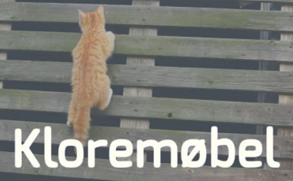 Kjøpe klorestativ til katt? Se vårt utvalg av klorestativ - Gode priser