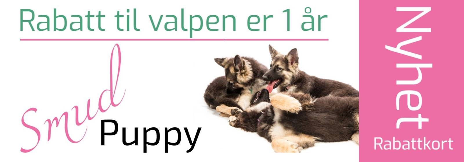 Rabattkode valp SmudPuppy Rabattkort på hundeutstyr og hundemat