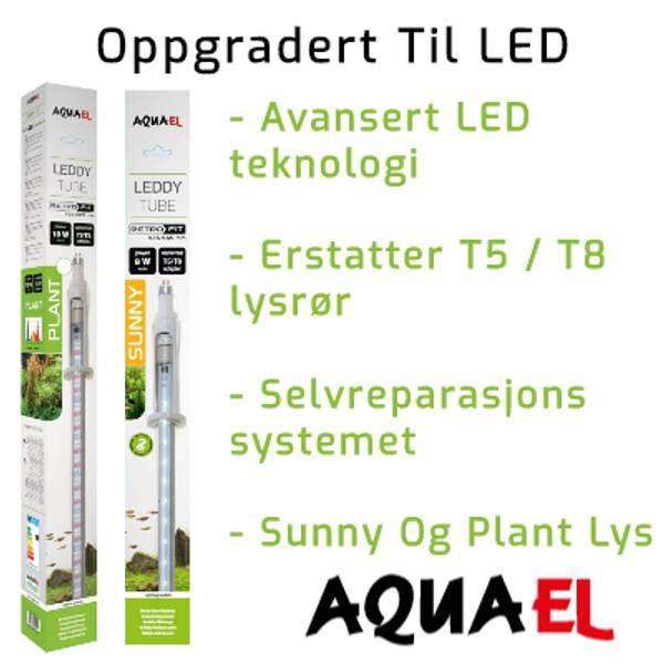 Skift ut lysrør i akvarium med LED lys. Aquael universal lysrør moduler lar deg bytte ut T5 og T8 lysrør til LED. Vi har også LED lys som kan festes rett på akvariet. Velg mellom Sunny eller plant LED lys.