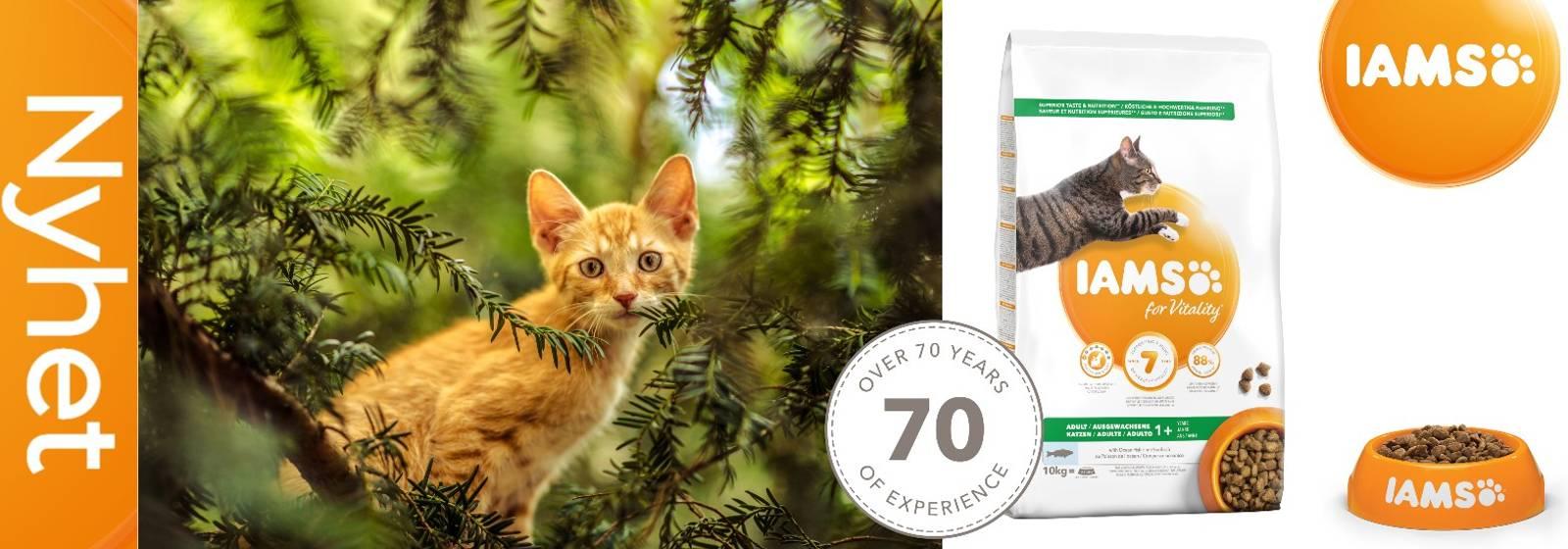 Kattemat Iams For Vitalitet tørfor og våtfor til katter i alle aldre