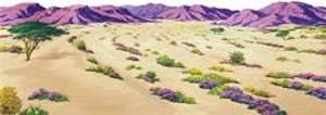 Bilde av Ørken, overlegg