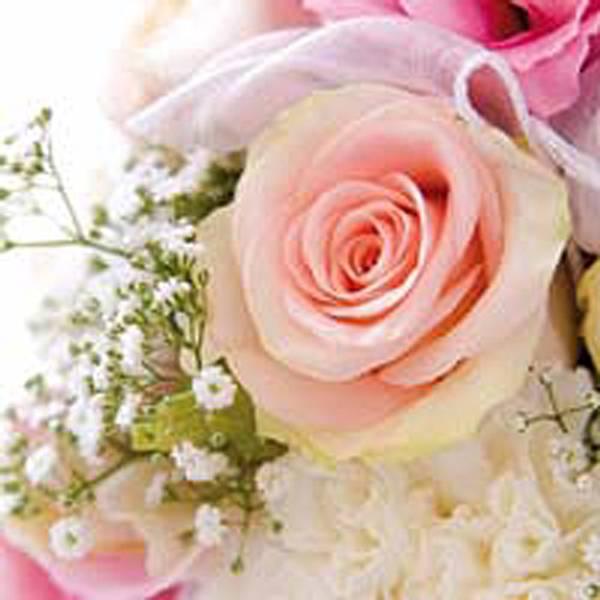 Lunsj serviett. Rosa romance, en rose.