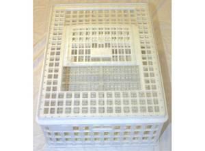 Bilde av Sanketeine - hvit plast