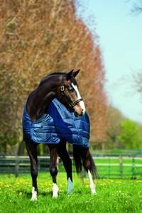 Bilde av Horseware Liner 200g