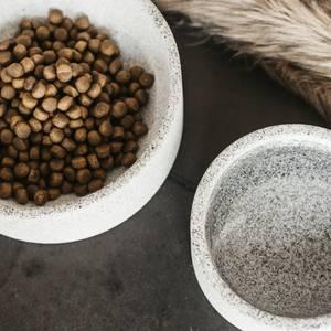 Bilde av Kentucky Dog Bowl Granit
