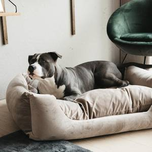 Bilde av KENTUCKY DOG BED VELVET BEIGE