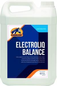 Bilde av Electroliq Balance FL 5 LTR