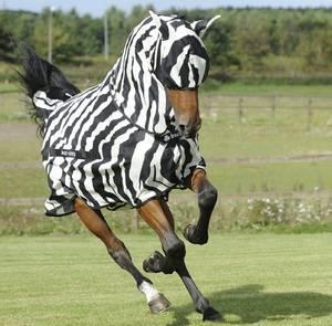 Bilde av Bucas Buzz-Off Fly Mask Zebra