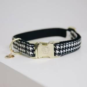 Bilde av Kentucky Dog Collar Pied de