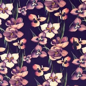 Bilde av Jersey Nero - Flowerfield Lilac