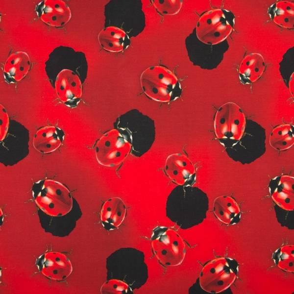 Bilde av Bomullsjersey - 5-6 cm marihøner på rødt