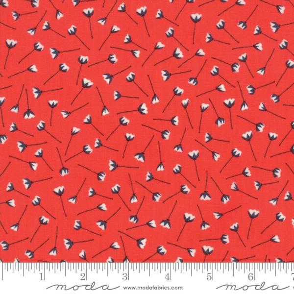 Bilde av The Front Porch - 2 cm sort-hvit blomst på rød