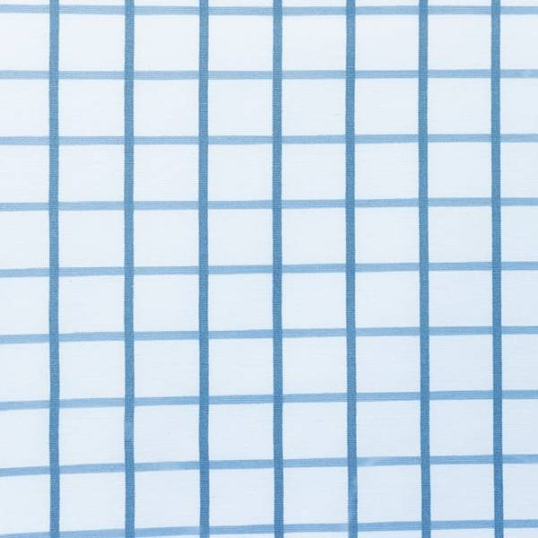 Bilde av Kanvas - 4 cm blågrå rutemønster på offwhite