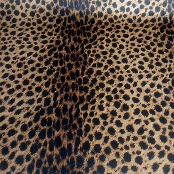 Bilde av Møbelvelour Safari Stor Leo, glatt