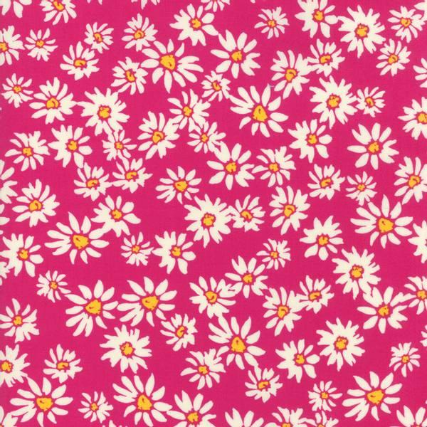Bilde av 60 cm Painted Garden - 2-4 cm margaritter på pink