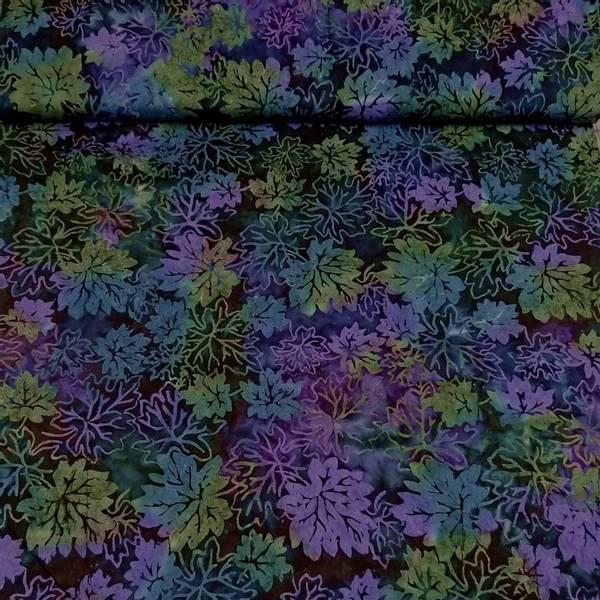 Bilde av Starburst - 4-8 cm blader på blå-grønn-lilla