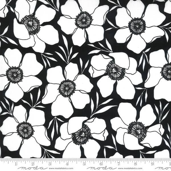 Bilde av Illustrations  - 8 cm hvite blomster på sort
