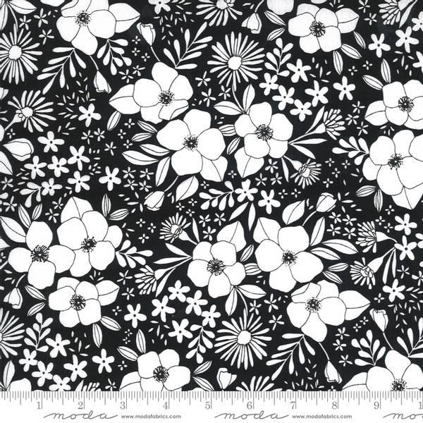 Bilde av Illustrations  - 1,5-4 cm hvite blomster på sort