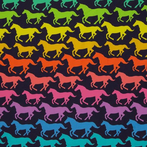 Bilde av French Terry børstet - 8-10 cm regnbuehester på sort