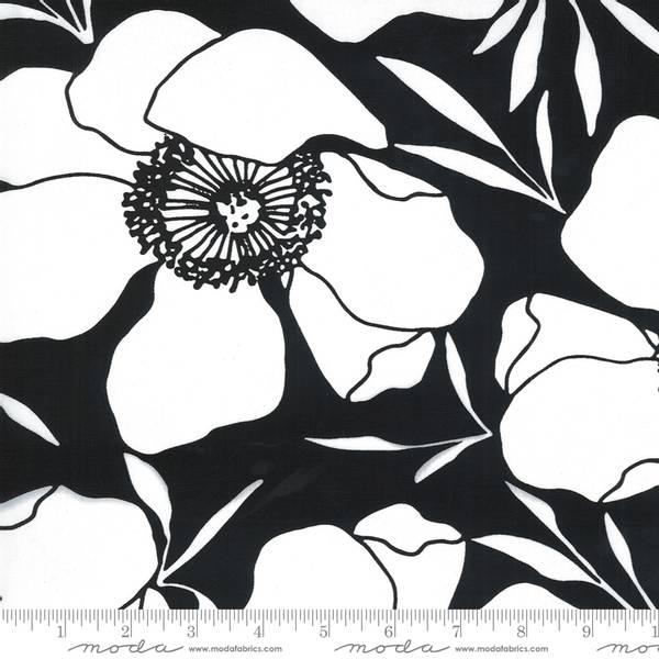 Bilde av Illustrations Kanvas - 19 cm hvite blomster på sort