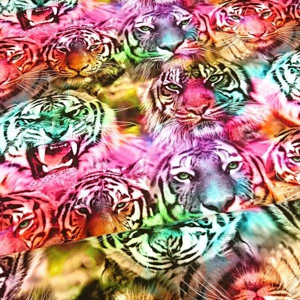 Bilde av Bomullsjersey - 15 cm tigerhode på regnbuefarget