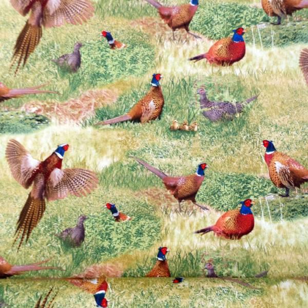 Bilde av Fasaner, fugl på gress, 2-10 cm