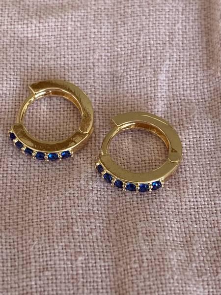 Bilde av Små øreringer med blå stener