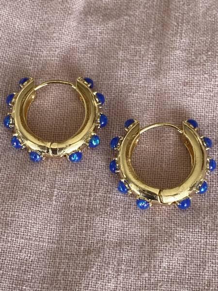 Bilde av Øreringer med blå perler