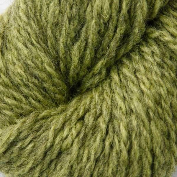 2107 Lime - Blåne