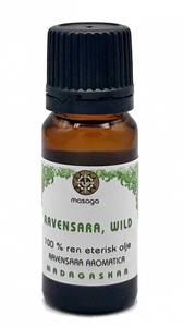 Bilde av Ravensaraolje Wild 100% ren eterisk olje 10 ml Masaga