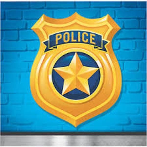 Bilde av Politi Cafeservietter, 16 stk