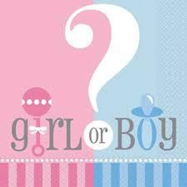 Bilde av Boy or Girl, Servietter, 16 stk