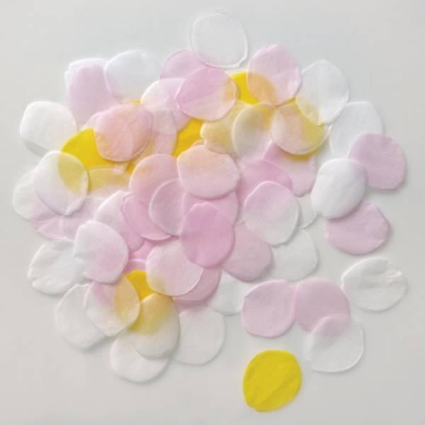 Bilde av Roseblad konfetti