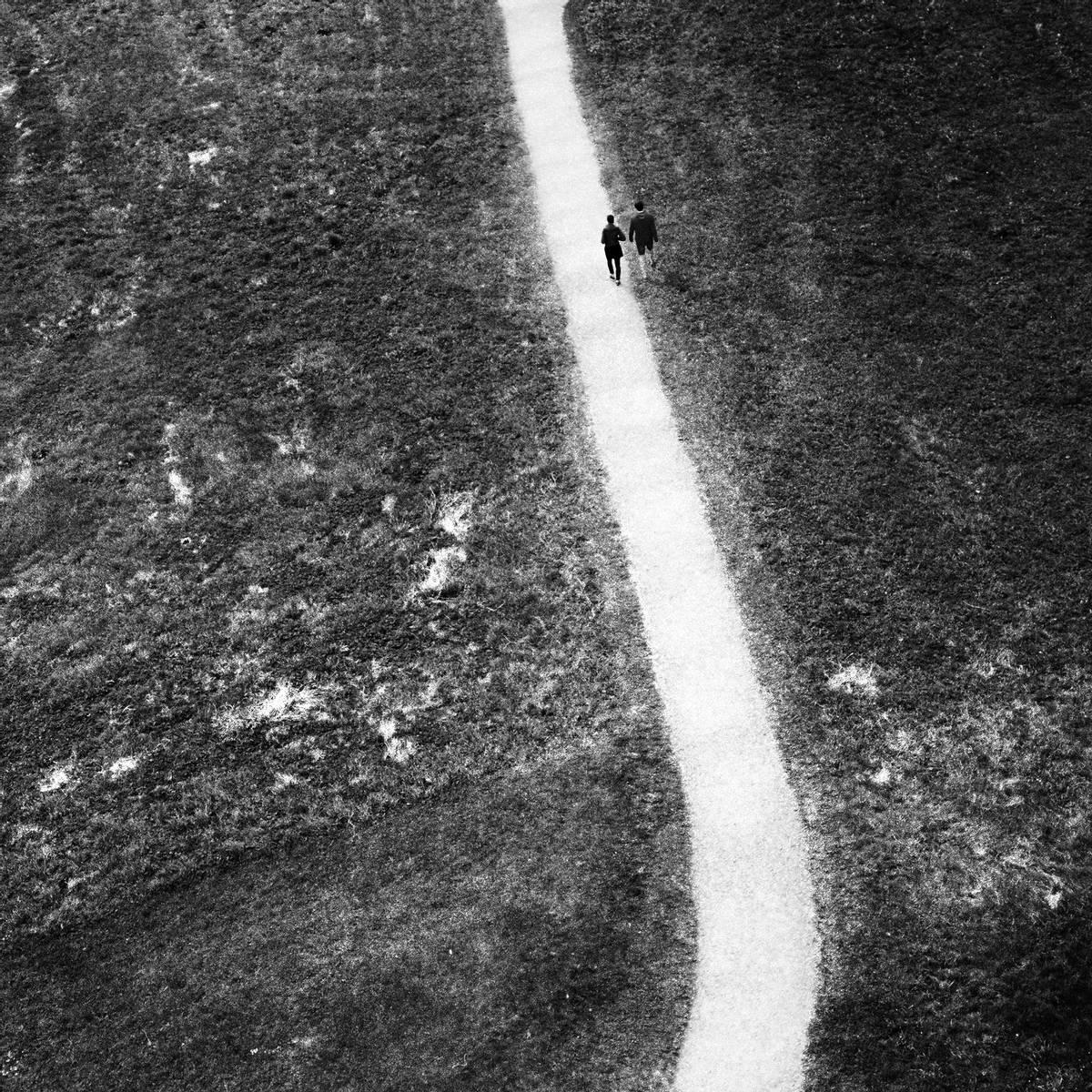 The White Trail