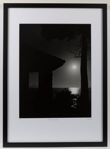 Image of Summer Silhouette