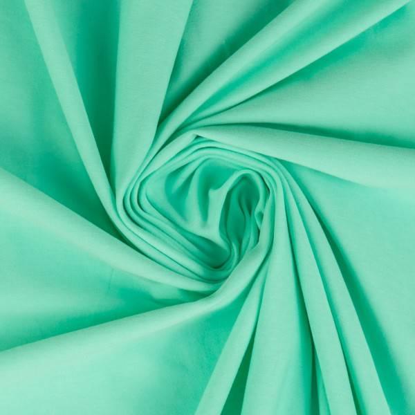 Bilde av Vanessa, Cotton Jersey 000260 Plain, pastel mint green