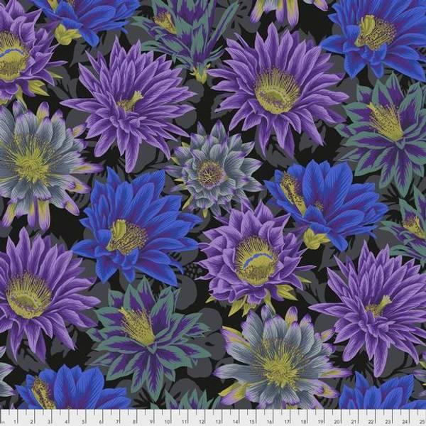 Bilde av Kaffe Fassett Cactus Flower, PWPJ096.BLACK