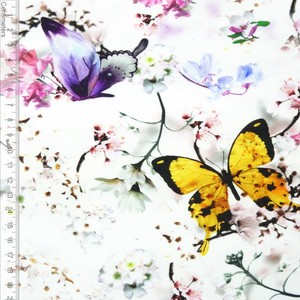 Bilde av Butterfly - French Terry