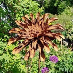 Bilde av 3D blomst fylt doble prestekrage