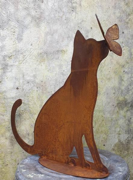 Katt med sommerfugl på nesen
