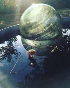 Bilde av Flyter Kobber Vannløper
