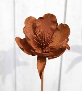 Bilde av 3D blomst Anemone D17x14cm 110cm høy