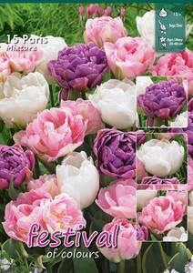 Bilde av Tulipan big pack Mix Paris