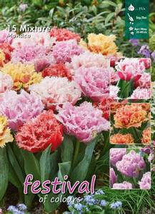 Bilde av Tulipan Big Pack  Mix Monaco