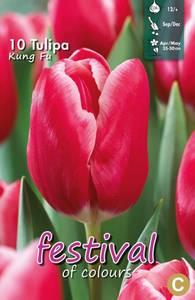 Bilde av Tulipan Kung Fu 10stykk