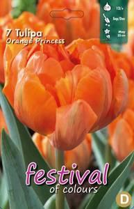 Bilde av Tulipan Orange Princess 7 stykk